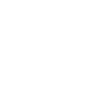 standing icon