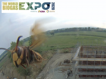 WB Expo2020